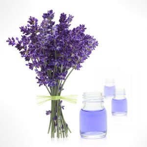 Introduction To Aromatherapy Training Course brighton holistics Sussex