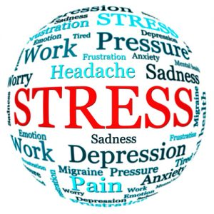 Understanding and managing stress online course at brighton holistics